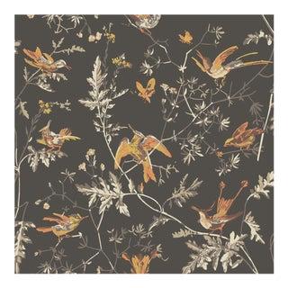 Hummingbirds Colour 112/4017 Botanic Style Wallpaper Sample For Sale