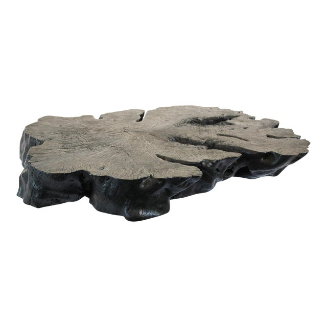 Lychee Stump Coffee Table - Image 1 of 5