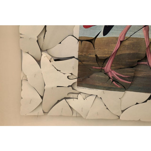 White Butterfly Box Scarlet Ibis For Sale - Image 8 of 9