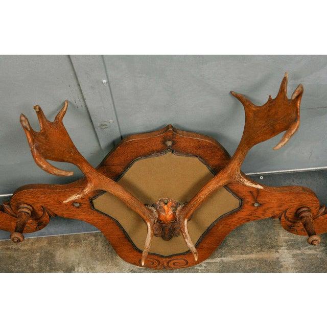 Victorian Carved Oak and Antler Coat/Hat Rack - Image 3 of 8