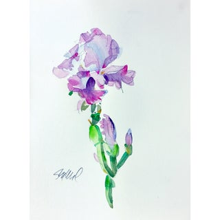 Botanical Iris Original Watercolor Painting For Sale