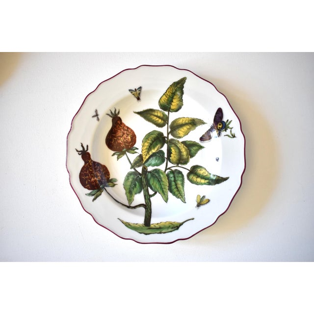 "Mottahedeh ""Chelsea Flowers"" Botanical Prints Plates - Set of 17 For Sale In San Francisco - Image 6 of 13"