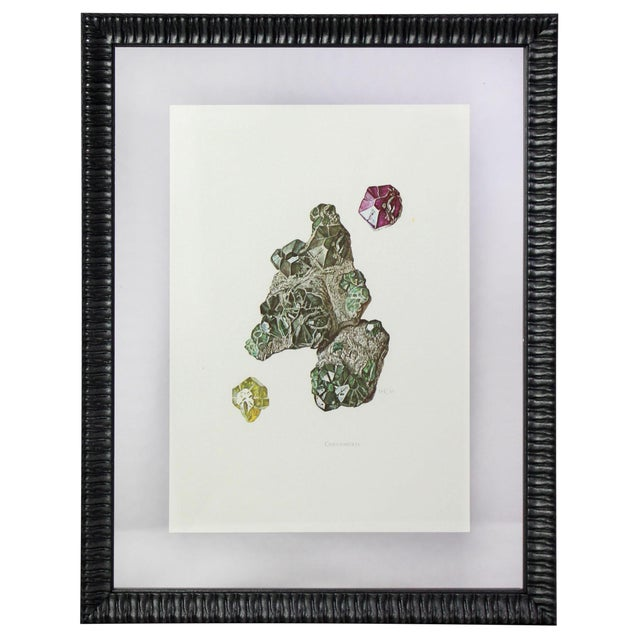 Antique French Gemstone Mineralogy Study Lithographs Prints - Set of 10 For Sale In Los Angeles - Image 6 of 13