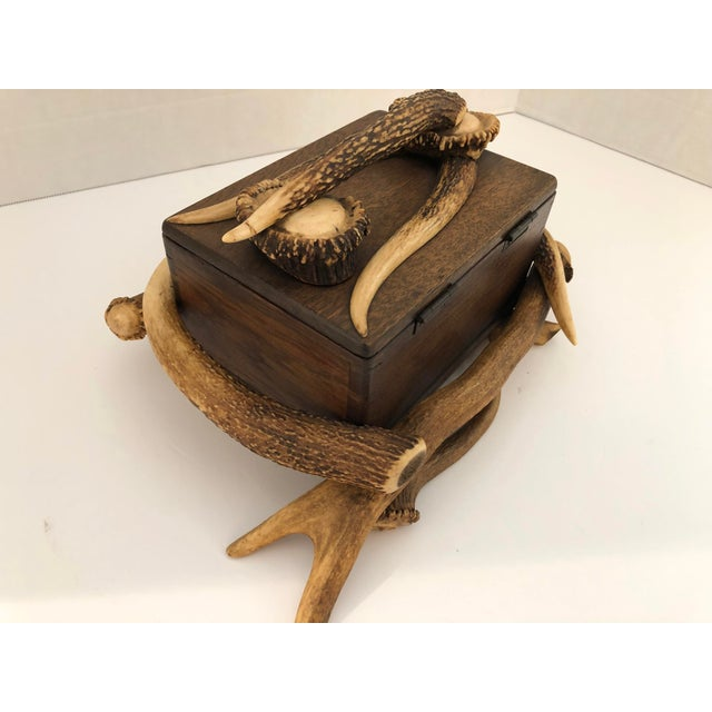 Black Forest Wood Box With Natural Antlers For Sale - Image 4 of 13