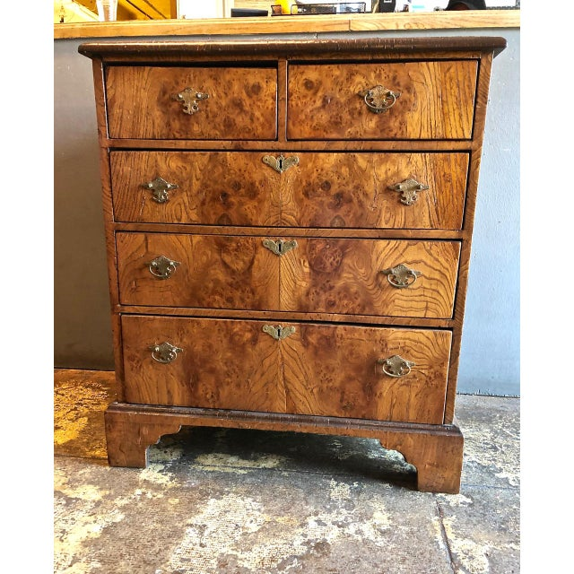 Late 19th Century George II-Style Burl Walnut Chest Of Drawers For Sale - Image 11 of 11