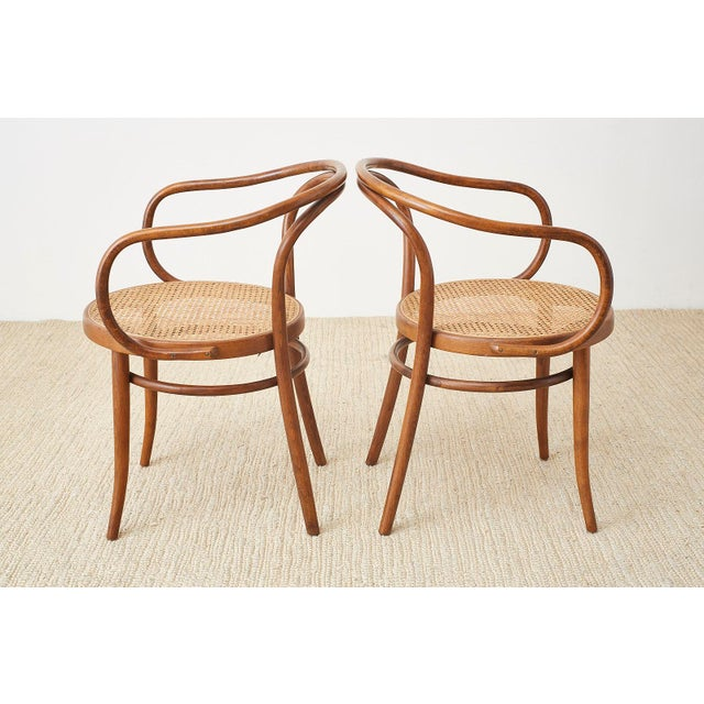 Thonet 209 Bentwood Cane Armchairs - Set of 8 For Sale - Image 9 of 13