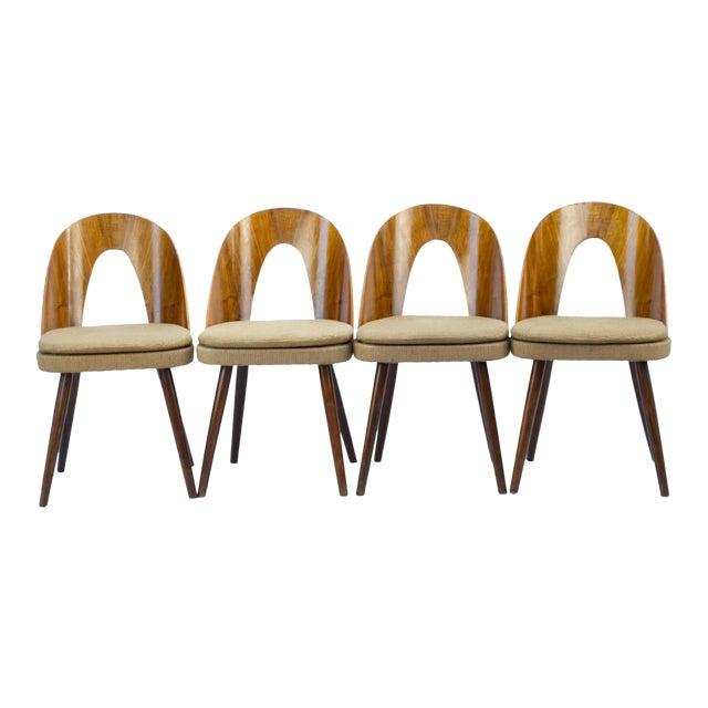 1960s Antonín Šuman for Tatra Nabytok Np Dining Chairs- Set of 4 For Sale