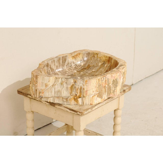 Vintage Mid Century Petrified Wood Sink For Sale - Image 4 of 9