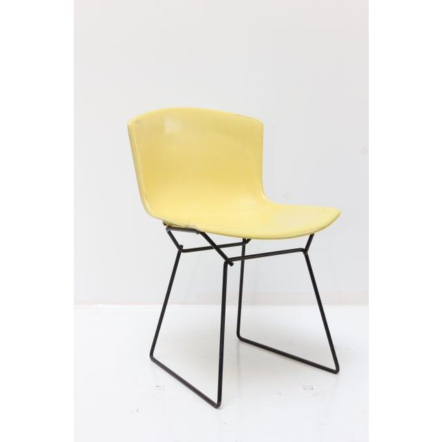 Knoll Bertoia Fiberglass Side Chair Yellow For Sale - Image 11 of 11