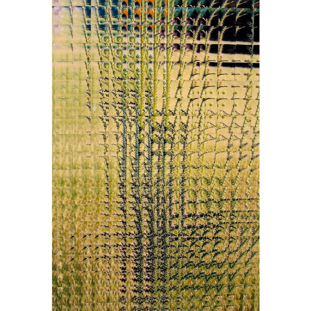 Rusty Scruby Photographic Reconstruction Titled Jim Miller Thistle, 2005 For Sale In Dallas - Image 6 of 11