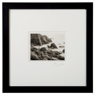 Platinum Print - Garrapata Beach Ca by Ryuijie For Sale
