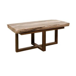 Organic Modern Polished Petrified Wood Coffee Table For Sale
