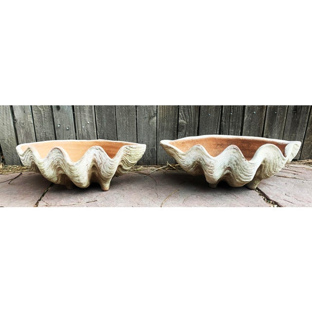 A pair of aged Terra Cotta Conch Shells by Campo De Fiori. Fits large oval metal saucer. Aged Terra-Cotta Care - Once...