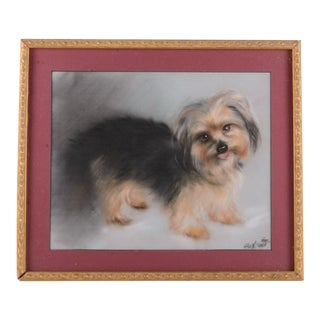 Vintage Pastel Painting Portrait of a Yorkie Dog, Framed For Sale