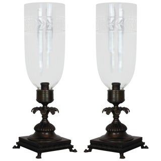 Pair of Regency Style Storm Shades For Sale