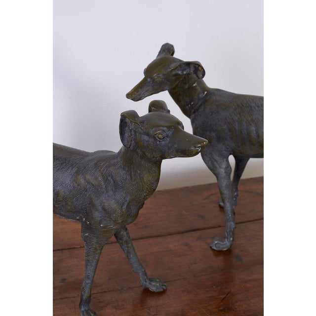 Pair of Bronze Whippets or Greyhound Dog Sculptures For Sale - Image 9 of 13