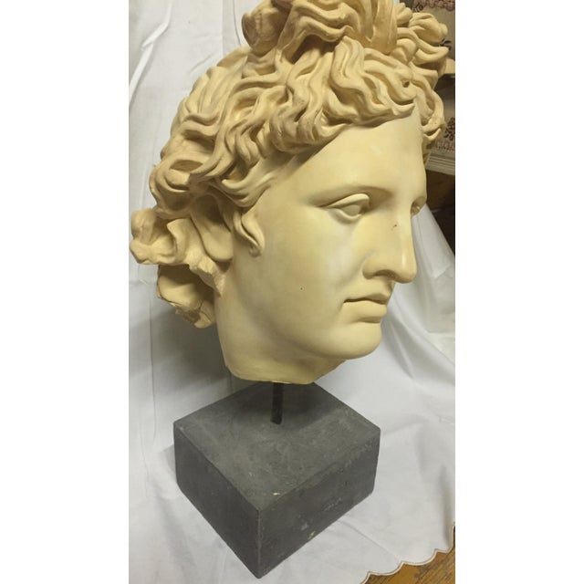 NeoClassical Plaster Bust Sculpture - Greek God's Head on Stone Base For Sale - Image 4 of 10