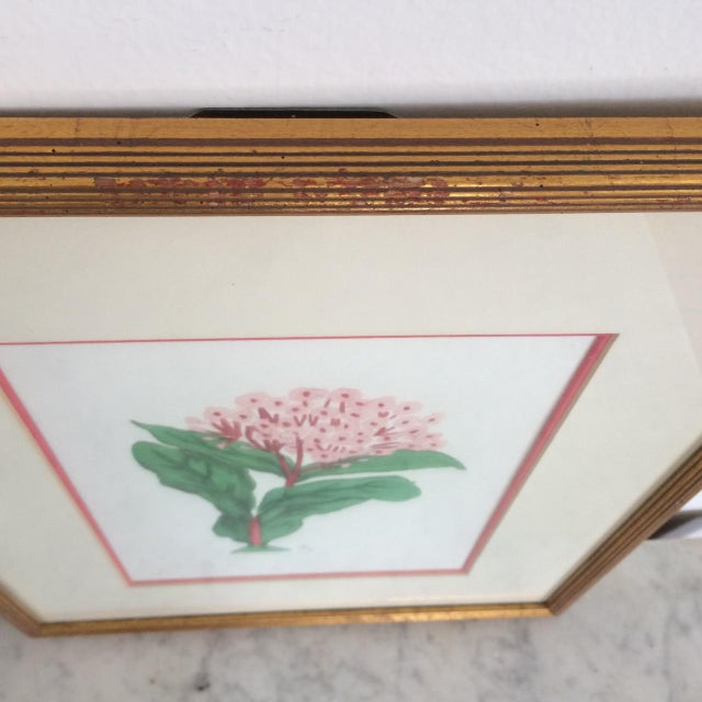 Pair of Botanical Chelsea House Flower Study Gallery Wall Drawings in Matching Gilt Frames For Sale - Image 9 of 13