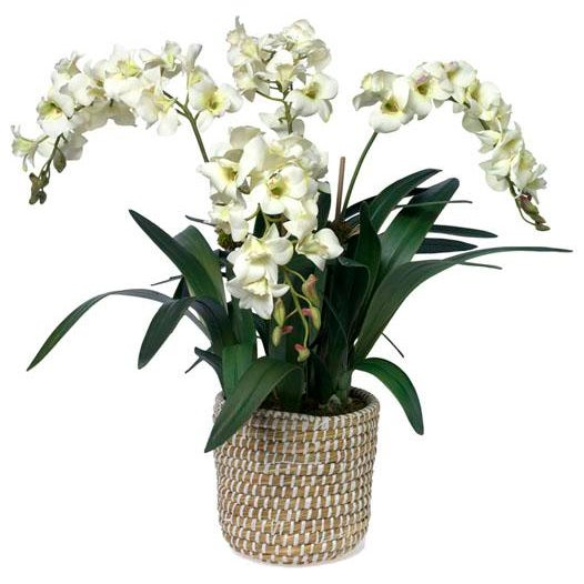 This lush faux dendrobium planted in a woven rattan and raffia basket adds a stylish note to any space. Hand-made to order...
