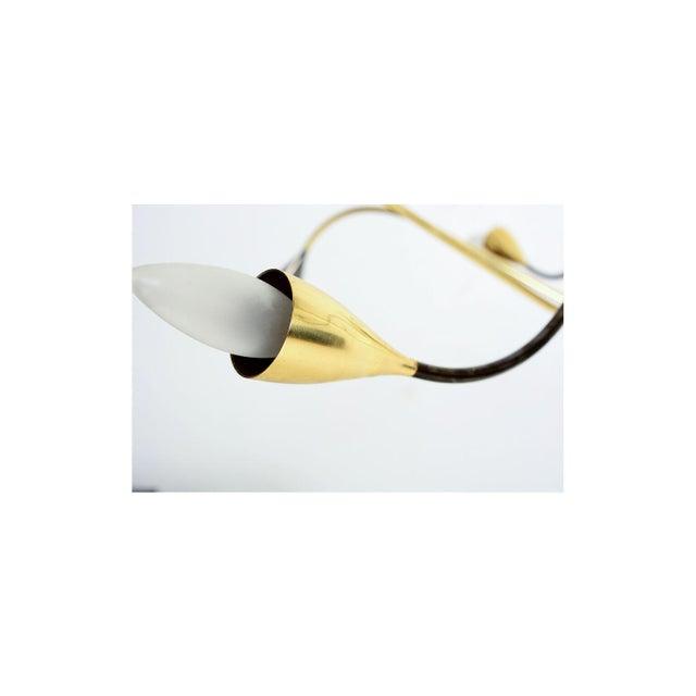 Gio Ponti Spider Sputnik Stilnovo Style Ten-Arm Brass Chandelier Italy 1950s For Sale - Image 4 of 9
