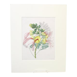 Vintage Hibiscus Matted Print For Sale