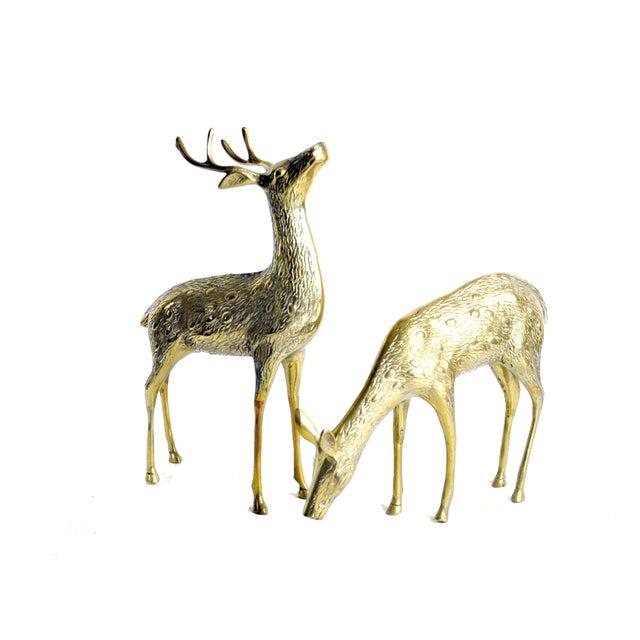 Vintage Brass Deer - A Pair - Image 1 of 2