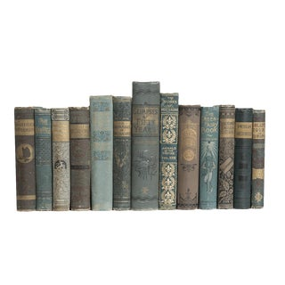 Antique Turquoise and Tan Book Set, (S/13) For Sale