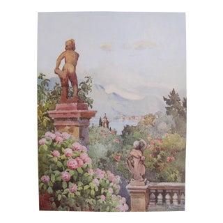 1905 Original Italian Print - Italian Travel Colour Plate - Hydrangeas, Isola Bella, Lago Maggiore For Sale