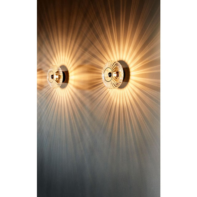 2010s New Wave Optic Wall Lamp - Rose For Sale - Image 5 of 7