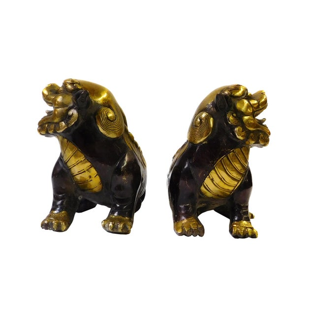 Chinese Bronze Golden Fengshui Foo Dogs - Pair - Image 5 of 6