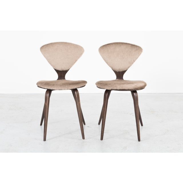 Set of six dining chairs Designed by Norman Cherner for Plycraft USA, circa 1960s Reupholstered in Italian cowhide with...