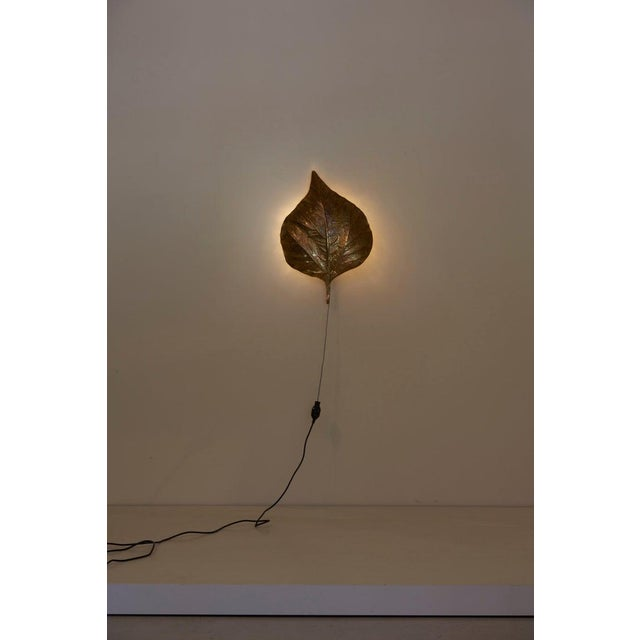 1 of 4 Huge Rhaburb Leaf Brass Wall Lights or Sconces by Tommaso Barbi For Sale - Image 9 of 13