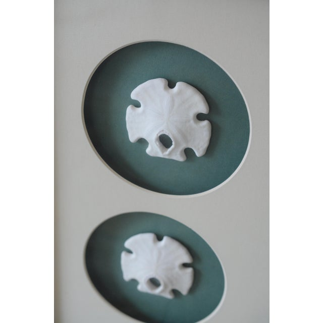 Boho Chic 1980s Green Lacquer Framed Mexican Arrowhead Sand Dollars For Sale - Image 3 of 6