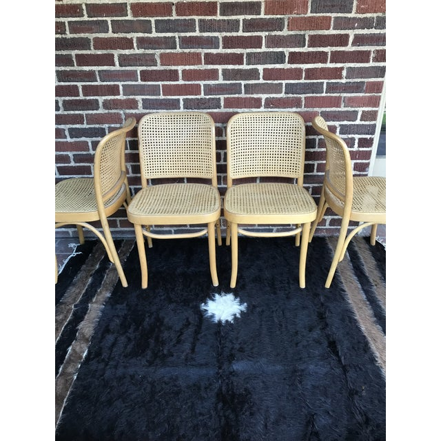"Amazing Josef Hoffmann FMG ""Prague"" chairs made in Poland. Two chairs in excellent condition. Two others have minor caning..."