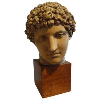 Italian Terra Cotta Classical Bust on Wood Base For Sale