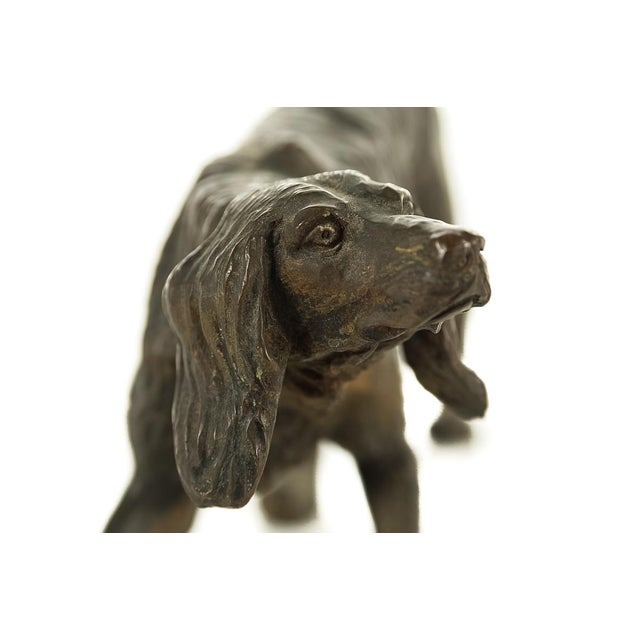 Brown Vintage Austrian Bronze Setter Dog Figurine For Sale - Image 8 of 9