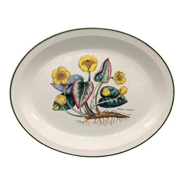 1970s English Enoch Wedgwood Tuns Botanical Nuphar Luteum Serving Platter For Sale