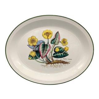 1970s English Enoch Wedgwood TunsBotanical Nuphar Luteum Serving Platter For Sale