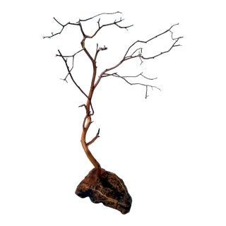 Natural Manzanita Tree Display