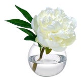Image of Diane James Faux White Peony Blossom For Sale