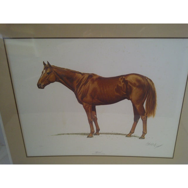 Traditional 1978 Triple Crown Winner, Limited Edition Print For Sale - Image 3 of 8