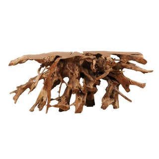 Tropical Hardwood Teak Root Console Table For Sale