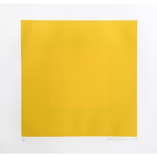 "Richard Anuszkiewicz Richard Anuzkiewicz, ""Spring Suite"" (Yellow & Yellow), Op Art Etching For Sale - Image 4 of 4"