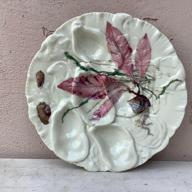 Limoges, France French Porcelain Sealife Haviland Limoges Oyster Plate For Sale - Image 4 of 7