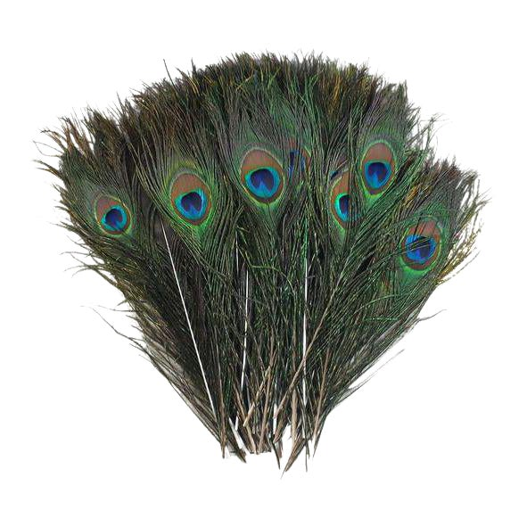 Early 21st Century Peacock Feather Decor, 50 Piece For Sale - Image 5 of 5
