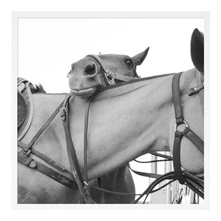 Friendship by Holly Roesch Contemporary Photograph in White Frame, Large