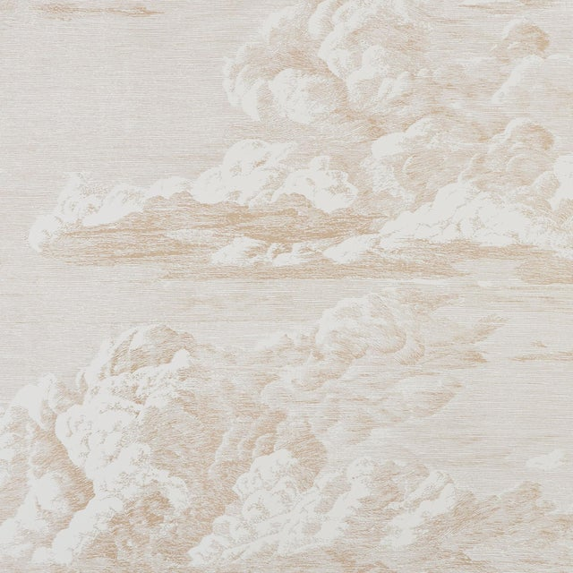 Schumacher Cloud Toile Wallpaper in Blush Gold For Sale