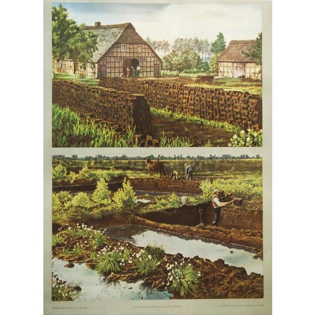 Paper German vintage peat removal school poster For Sale - Image 7 of 7