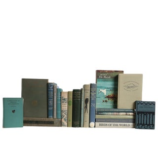 Birding & Outdoor Lovers' Book Set, S/20 For Sale