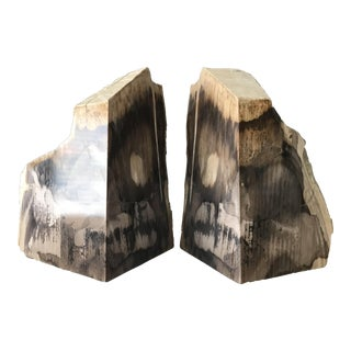 Vintage Sculptural Petrified Wood Bookends - A Pair